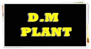 D.M PLANT